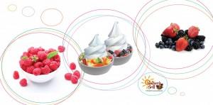 frozen-yogurt-counter2