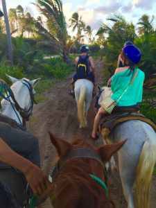 horse-back-riding-on-the-path