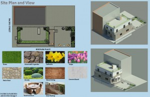 Site Plan and Yard
