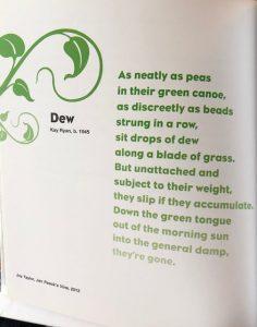 Poem for First Blog Post