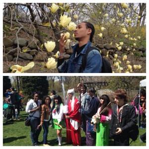 The Sakura Matsuri Festival at the Brooklyn Botanical Gardens.  I quite enjoyed myself!