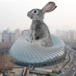 Joseth Modeste - The Rabbit Hole Goes Deep