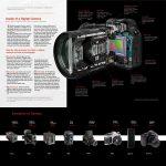 Xavier Guerrero- Camera Diagram