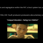 Web Design: Damani Douglas -The Pandemic: From School to Prison
