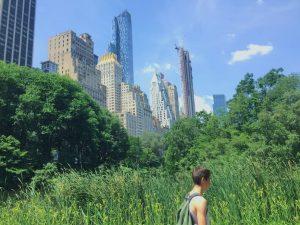 Summer Walk, Central Park, New York, 2019.