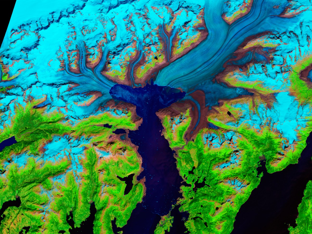 NASA image: Shrinking Glacier, Alaska Alaska's Columbia Glacier descends through the Chugach Mountains into Prince William Sound. When British explorers surveyed the glacier in 1794, its nose extended to the northern edge of Heather Island, near the mouth of Columbia Bay. The glacier held that position until 1980, when it began a rapid retreat. The glacier has thinned so much that the up and down motion of the tides affects its flow as much as 12 kilometers (7.5 miles) upstream, until the glacier bed rises above sea level and the ice loses contact with the ocean.