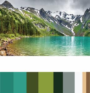 Color Inventory