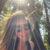 Profile picture of Jill Belli