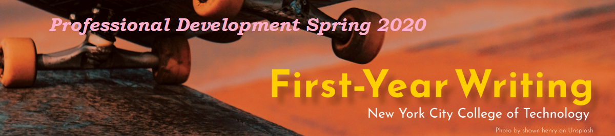 2020 Professional Development FYW