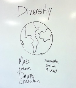 diversity team