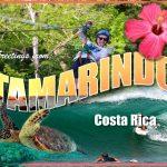 Greetings from Tamarindo Postcard