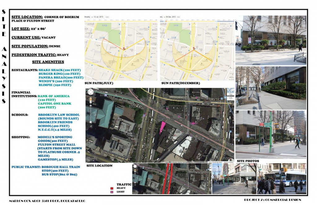 project2 site analysis