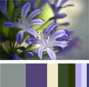 jessica Color Inventory 2