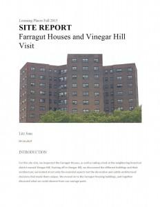 Site Report 1