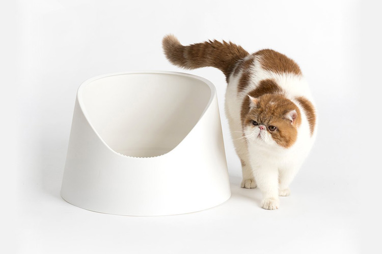 Snow Mountain Litter Box