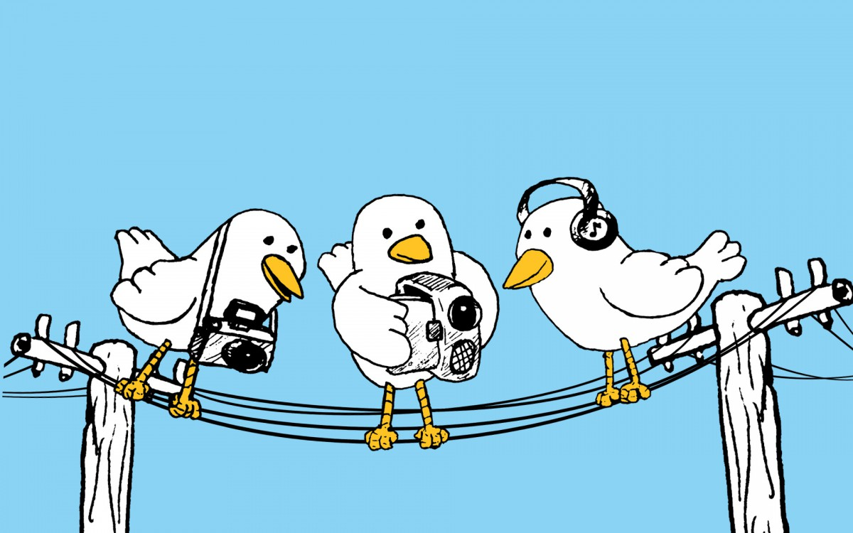 A cartoon of 3 bird sitting on power lines with one holding a camera, one holding a video camera, and one with headphones on.