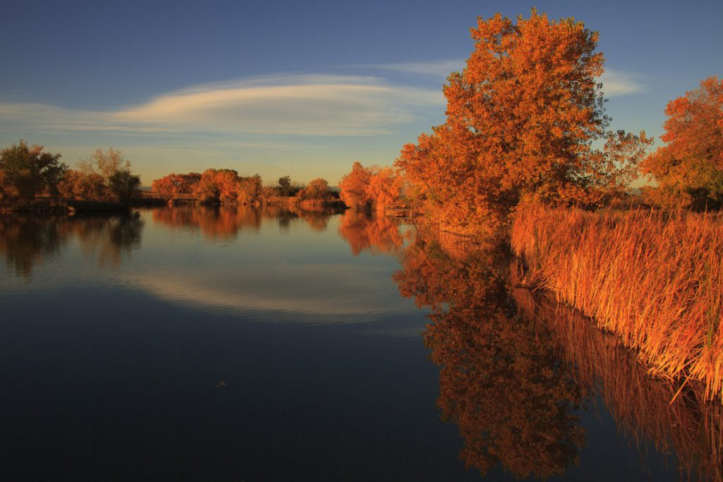 a lake setting in the fall where leaves on trees are orange