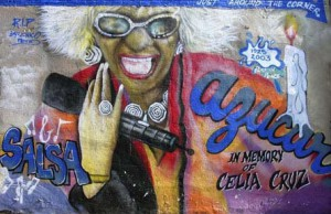 To the right is a mural honoring the Cuban Salsa songstress Celia Cruz who in my opinion was one of the pioneers of latino music. Celia was a remarkable person who spread joy to her people with her music. This mural is located on 10th Street between Avenues D and C.