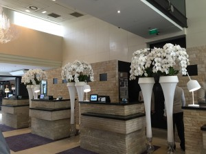 The lobby and the front desk.