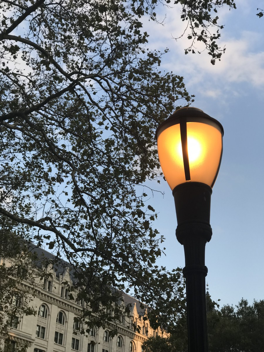 A old Street Light helping us see