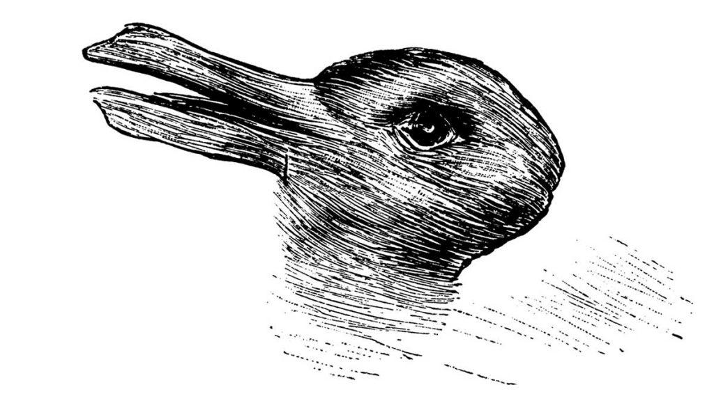 Duck-Rabbit Ambiguous Figure