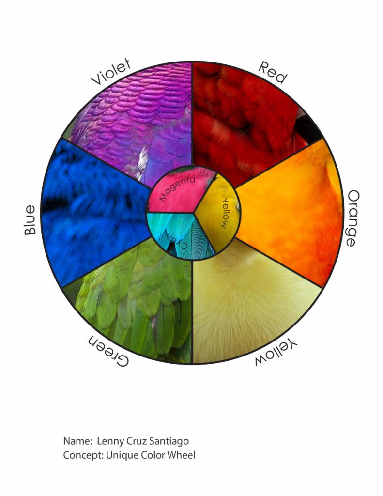 Discover: Unique Color Wheel