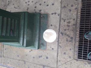 Random paper plate on the side walk