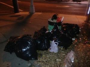 garbage4