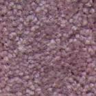 Carpet Sample photo.2011.06.13