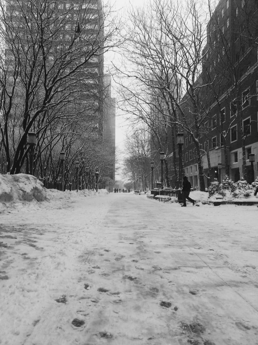 a Snowy Walkway