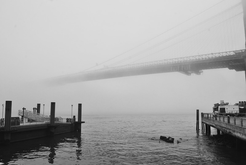 piers in the fog