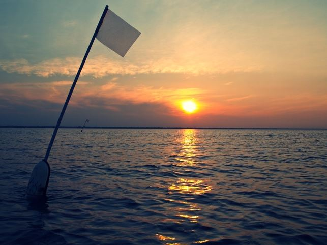 white flag with a sunset background