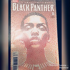 A comic book cover of Black Panther