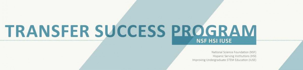 NSF HSI IUSE Transfer Success Program