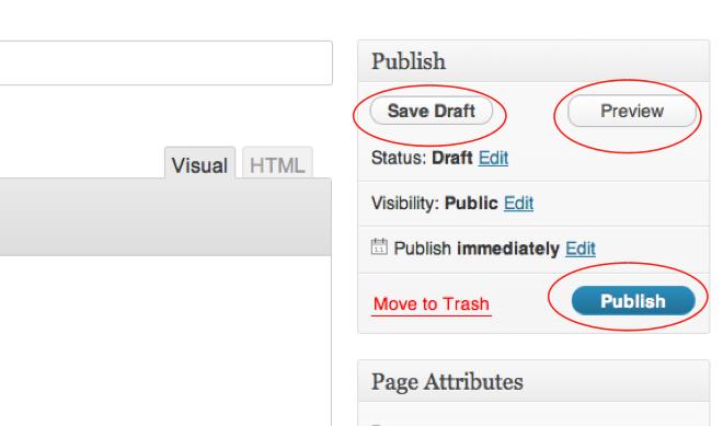 Publish Page Screenshot
