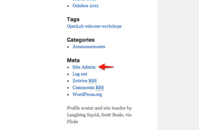 site admin link screenshot