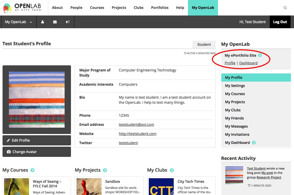 ePortfolio Profile screenshot