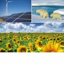 ECON2505 Environmental Econ, secD728, SP2015