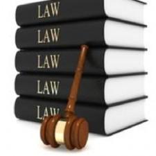 ENG3401: Law through Literature Spring 2015