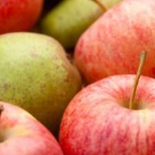 HMGT 1102 Introduction to Food & Beverage Management
