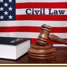 LAW 1103, Civil Law & Procedure S17