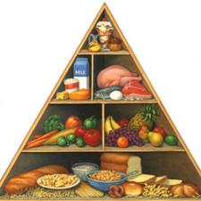 Nutrition (Bio 3524)