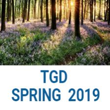 COMD3503Spring2019 Topics in Graphic Design