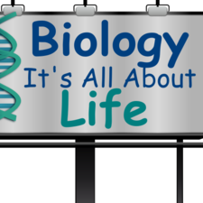 Human Biology BIO 1100 Fall 2013