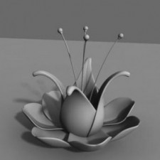 Advanced 3D Animation IND4800